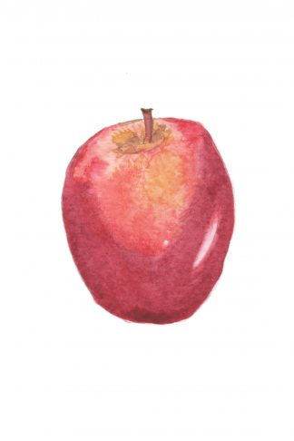 Still Life #04 - Red Apple